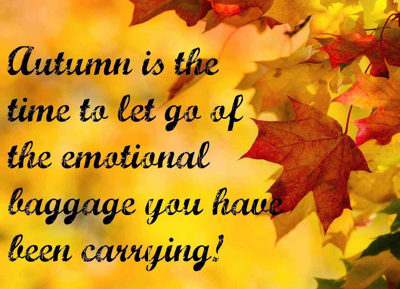 autumn saying