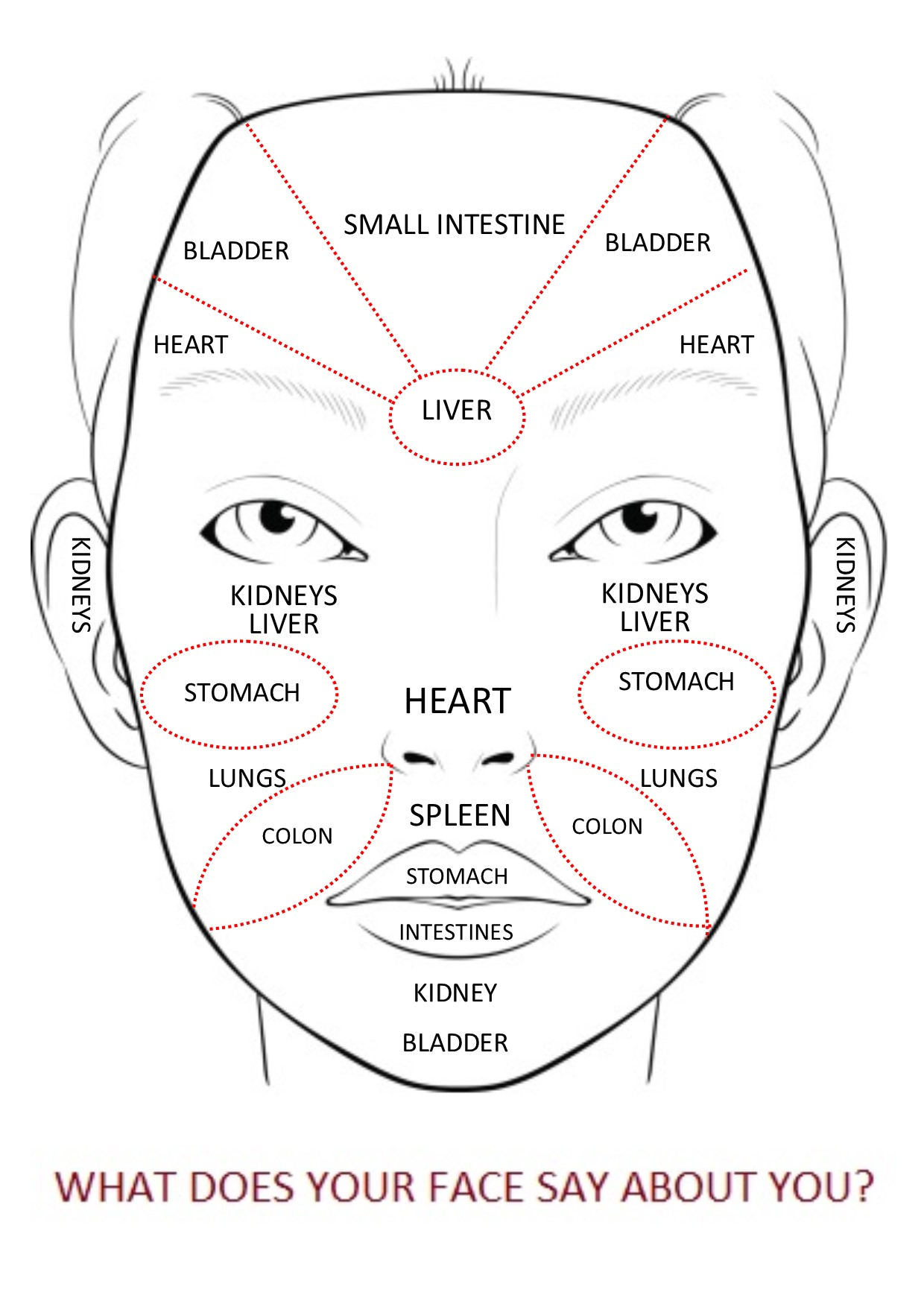 Chinese Face Mapping Face Reading For Your Health with Chinese Medicine   Acupuncture  Chinese Face Mapping